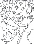 Click for Free Coloring Page of Finn
