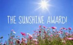 Sunshine Award field of flowers