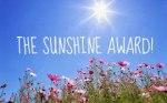 Sunshine Award field of flowers