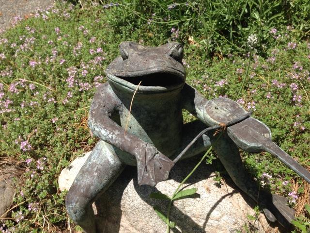 Frog violining