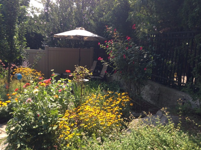 Bronxville garden and umbrella