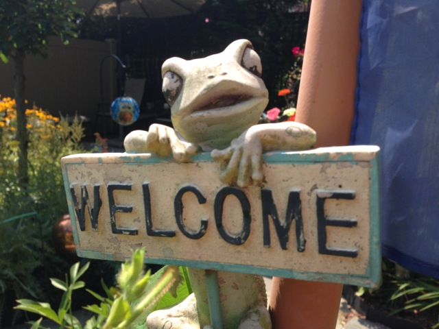 Frogs Welcome