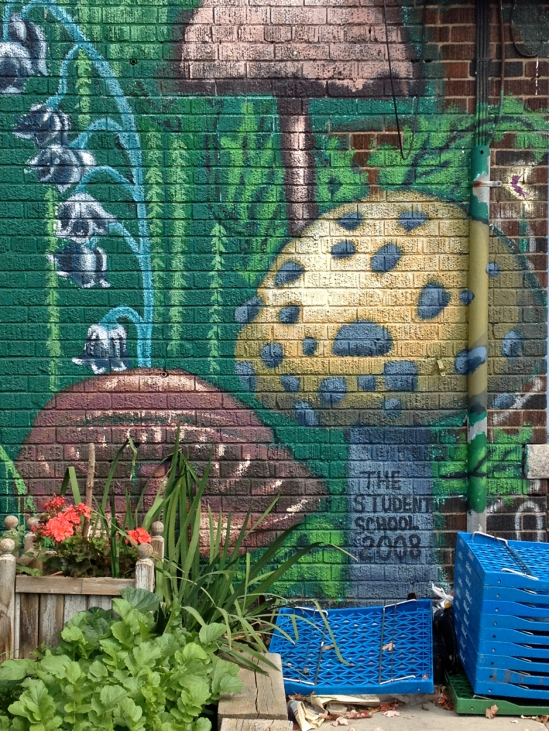 "Mushrooms and title of Fairyland Mural reading ""The Student School 2008"""