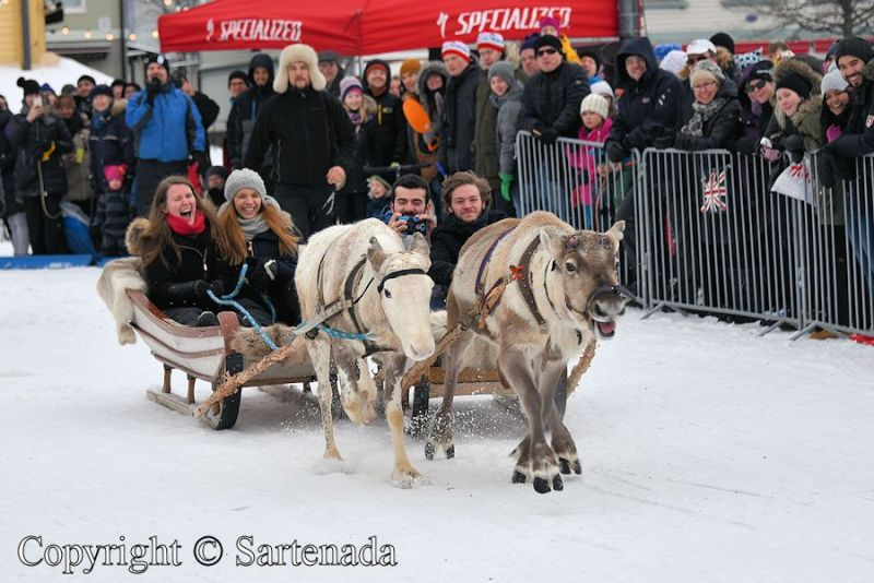 reindeer_driving_competition_-14