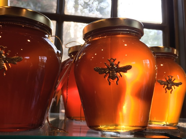 Pots of honey glowing from window light, with a bee on the jar