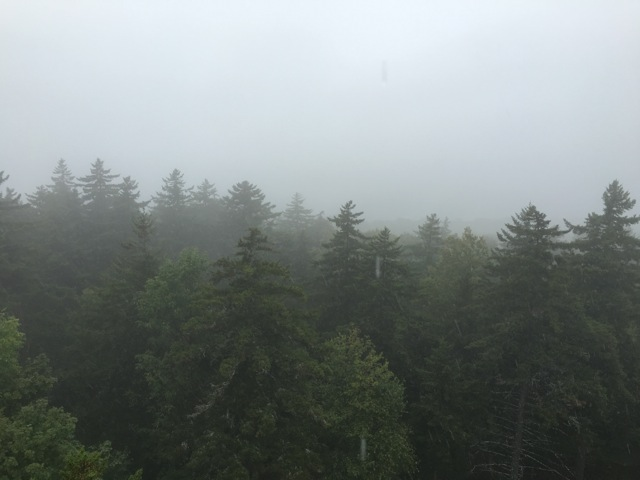 Allis State Park, Vermont, from the Fire Tower, rainy day