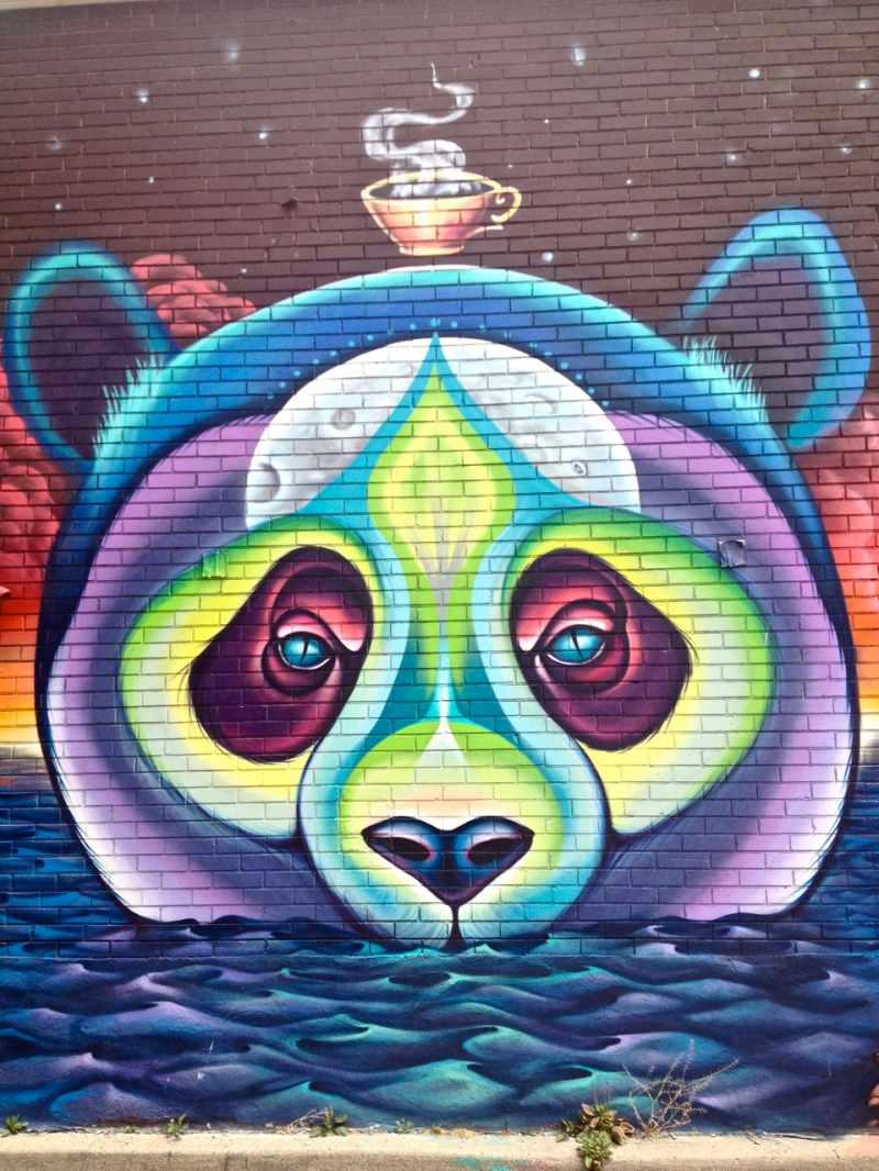 Shalak Attack's Toronto Panda